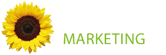 Sunflower Marketing Services, Outsourced marketing services for businesses in the Midlands